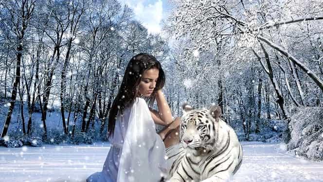 Zodiac chinezesc 2020 Tigru. Previziuni complete pentru această zodie: marea dragoste, vise premonitorii și vacanțe de neuitat