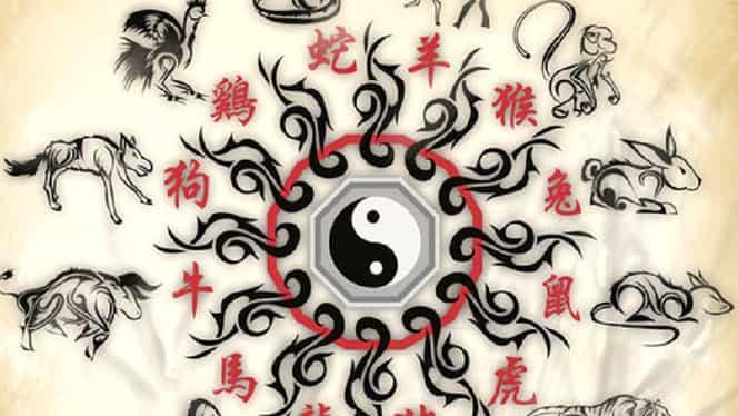 Zodiac chinezesc care reflectă cu o putere deosebită tot ce se va întâmpla cu zodiile în luna septembrie