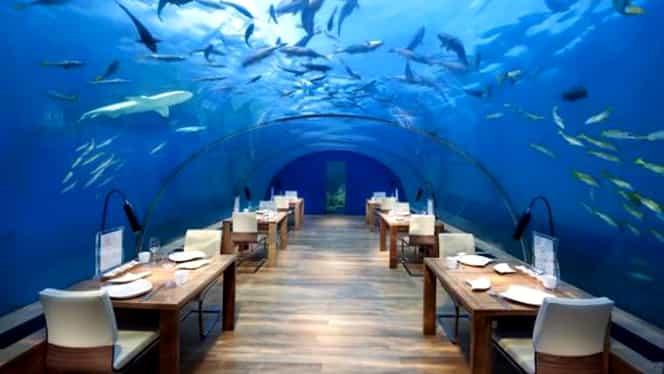 Topul celor mai scumpe restaurante din lume! Poţi mânca printre rechini! GALERIE FOTO!