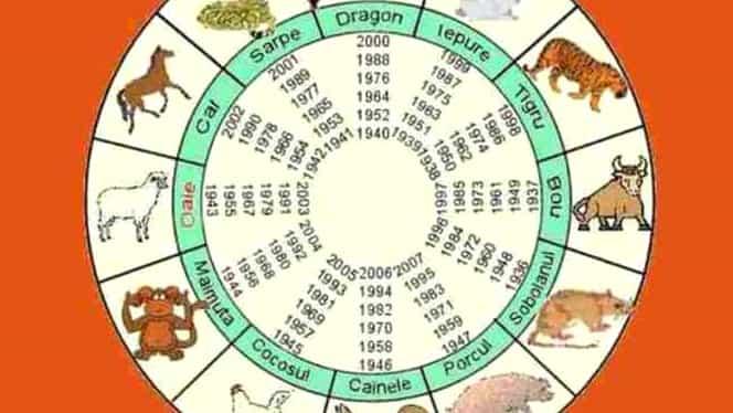 Horoscop chinezesc pentru ziua de miercuri, 26 februarie 2020. Câinele simte că partenerul de viață se îndepărtează încet, dar sigur