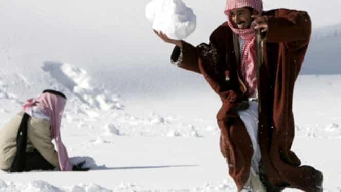 A nins în deşertul Arabiei Saudite! Pozele cu cămile acoperite de zăpadă fac înconjurul Internetului!