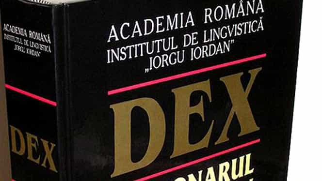 """Lecții de gramatica limbii române: de ce e greșit să spui """"spășit"""" și """"nici într-un caz"""""""