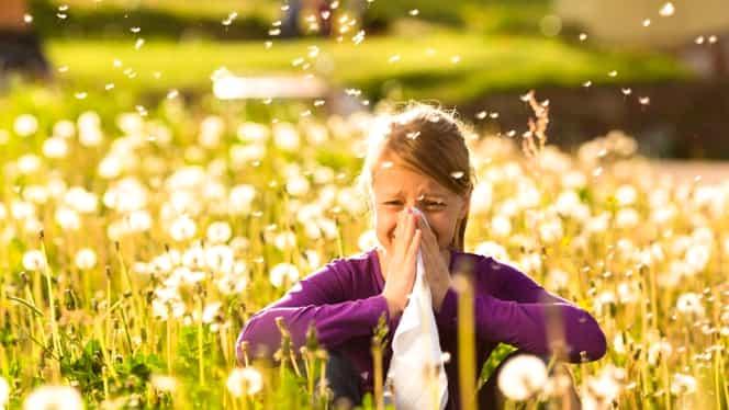 Alergiile de sezon. Ce remedii naturiste recomandă specialiștii