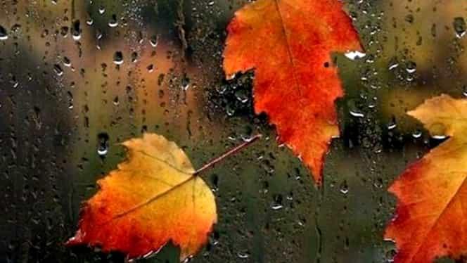 Vremea în București joi 4 octombrie. Meteorologii anunță o încălzire ușoară!