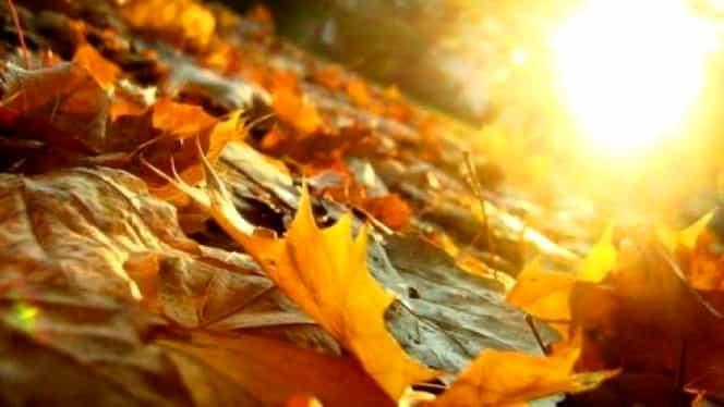 Vremea în București sâmbătă 1 septembrie. Toamna vine însoțită de caniculă!