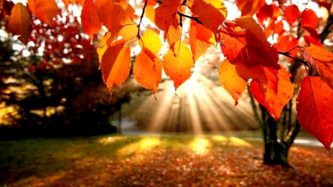 Temperaturi ideale, în săptămâna 16-22 octombrie! Vremea va fi călduroasă în toată ţara