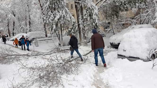 Capitala, sub asediul zăpezii. Cum arată Bucureştiul după prima ninsoare din acest sezon. GALERIE FOTO