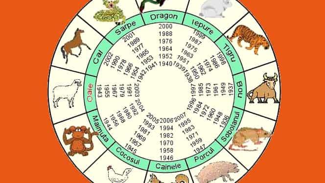 Horoscop chinezesc de weekend 14 – 15 septembrie 2019. Șobolanii au un mare noroc