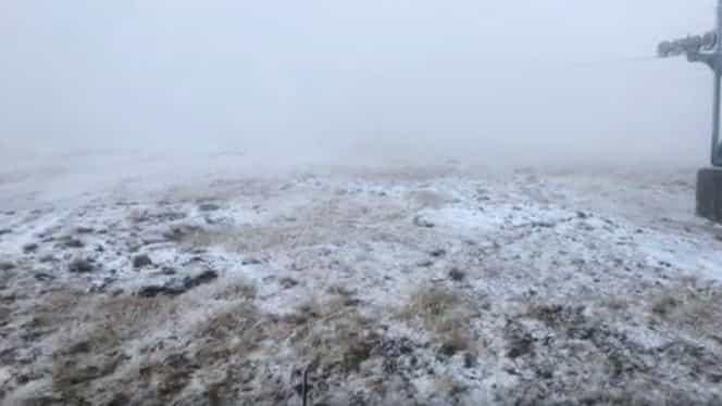 VIDEO. Iarna şi-a intrat în drepturi! Prima ninsoare a căzut în România