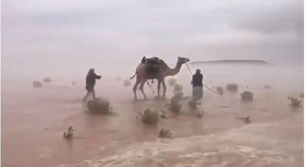 Regiuni din deşertul Golfului Persic au fost inundate! Video! Imagini incredibile