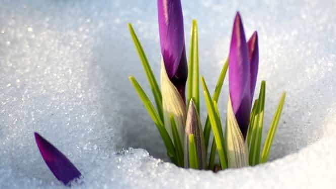 Prognoza meteo 5 martie. Vremea se încălzeşte uşor în toată ţara