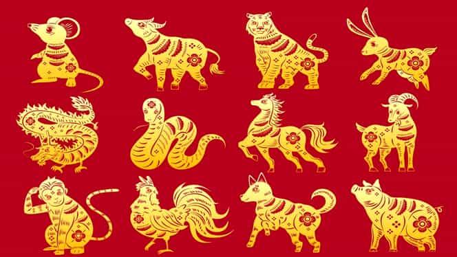Zodiac chinezesc pentru marți, 10 decembrie 2019. Nativii Maimuță și Oaie se îmbogățesc