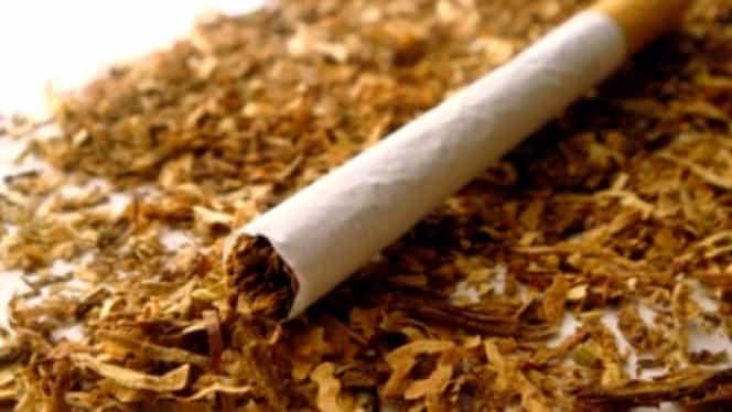 Motivul pentru care femeile din Tanzania folosesc tutun în zonele intime. O investigație BBC a dezvăluit totul!