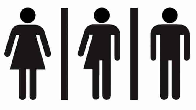 """Prima țară din Europa care introduce oficial în documentele cetățenilor """"al treilea sex""""! Adio, """"bărbat sau femeie"""""""