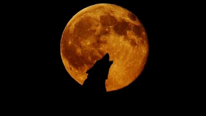 Zodia care e influențată decisiv de eclipsa de lună și luna plină de azi, 16 iulie. Viața i se va schimba radical