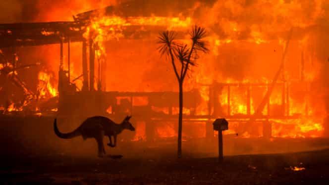 Klaus Iohannis are forțe pregătite să intervină în Australia! Anunțul făcut de MAI