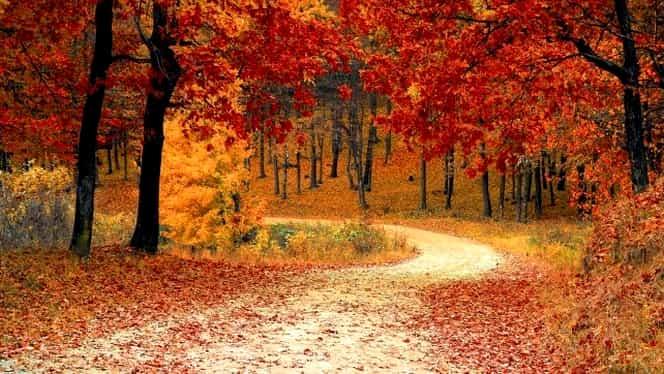 Prognoza meteo 11 noiembrie. Temperaturile cresc în toată ţara