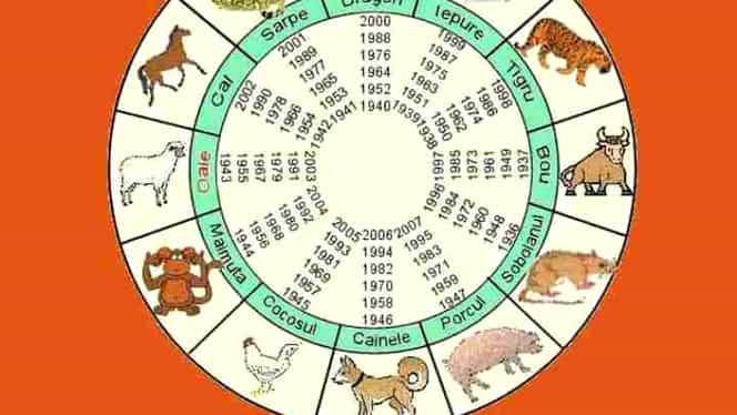Zodiac chinezesc pentru marți, 4 februarie 2020. Bivolii sunt sătui de rutină