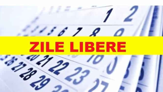 Minivacanță de 1 decembrie 2018. Câte zile libere au românii