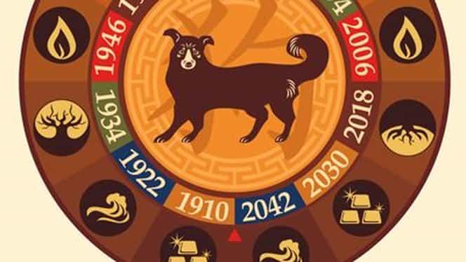 Zodiac chinezesc pentru joi, 12 decembrie 2019. Câinele nu se mai mulțumește cu puțin
