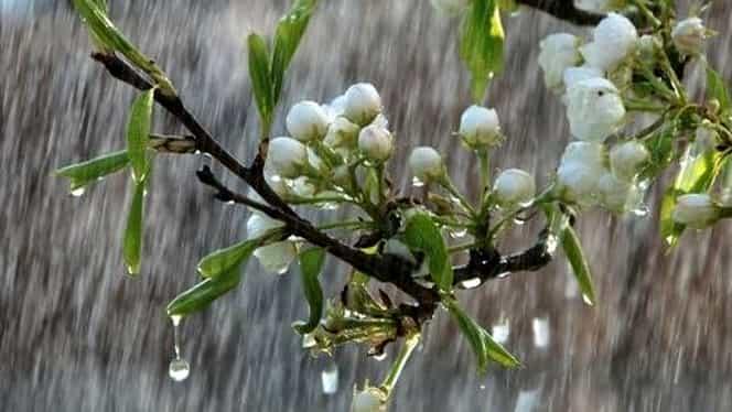 Prognoza meteo 15 martie. Temperaturile scad uşor şi revin ploile