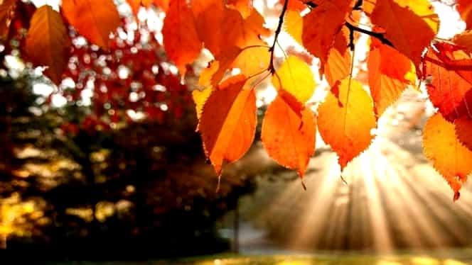 Prognoza meteo 23 noiembrie. Vremea se încălzeşte uşor