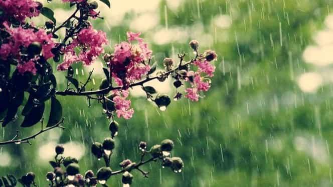 Prognoza meteo 17 aprilie. Vremea va fi călduroasă, dar va ploua izolat