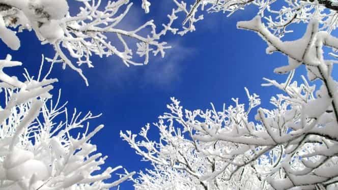 Prognoza meteo. Cum va fi vremea de Crăciun şi Revelion şi când va ninge în Bucureşti