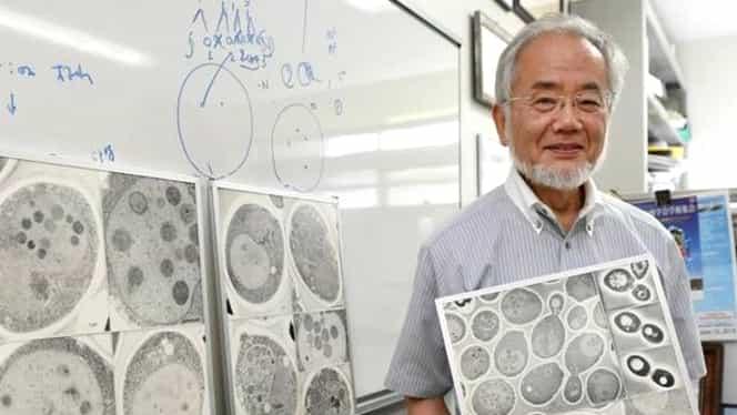 Dieta unui laureat al Premiului Nobel! Metoda sa nu dă greș!
