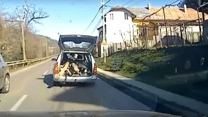 Şofer inconştient, pe străzile din Piatra Neamţ! Oamenii au crezut că nu văd bine