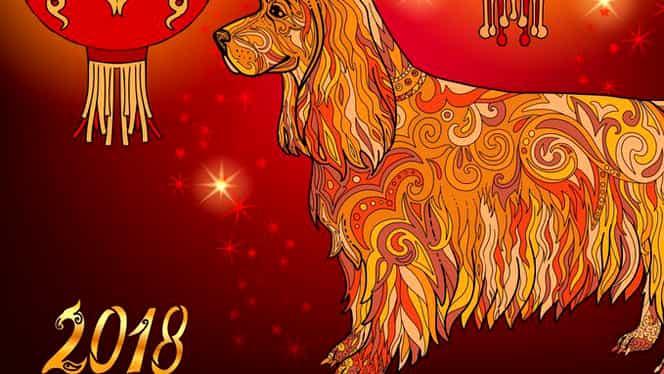 China a intrat în Anul Câinelui de Pământ! Care sunt numerele şi culorile norocoase