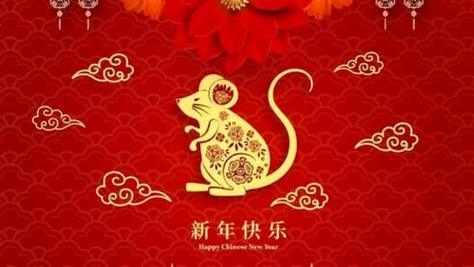 Zodiac chinezesc: joi, 13 martie 2020. Șobolanul rămâne la ceea ce știe și nu poate fi contrazis ușor