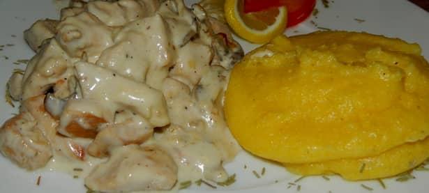 Ciulamaua de ciuperci cu lapte se prepară în cel mult o jumătate de oră și este o mâncare ușoară și delicioasă