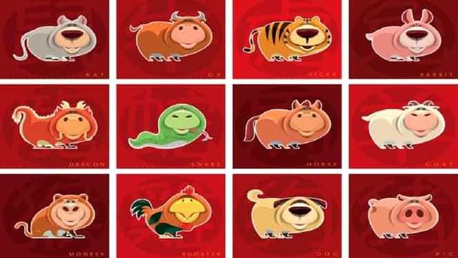 Zodiac chinezesc pentru vineri, 17 ianuarie 2020. Dragonii și Tigrii se implică în tot felul de conflicte