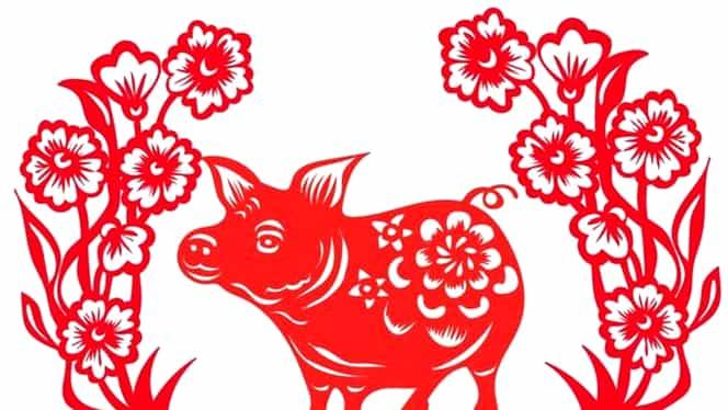 Zodiac chinezesc pentru joi, 7 mai 2020. Mistrețul rănește foarte ușor prin intermediul vorbelor