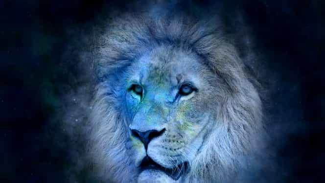 Femeia și bărbatul Leu. Ce trăsături au în comun și prin ce se diferențiază