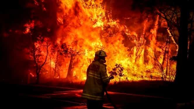 """Incendii în Australia. Focul arde pe o suprafață imensă. Specialiștii vorbesc de un """"Cernobîl climatic"""""""