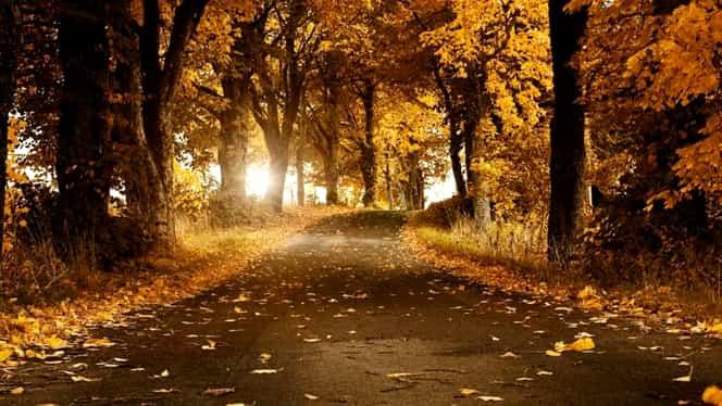 Prognoza meteo de marți, 2 octombrie! Vremea se face din nou frumoasă!