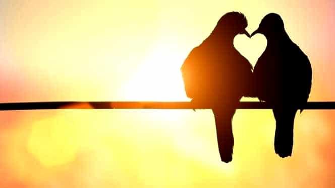 Horoscopul dragostei duminică, 30 septembrie: intrăm în luna taurului