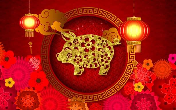 2019 este anul Porcului de Pământ în zodiacul chinezesc