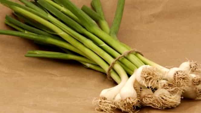 Usturoiul verde, remediul contra bolilor respiratorii cronice