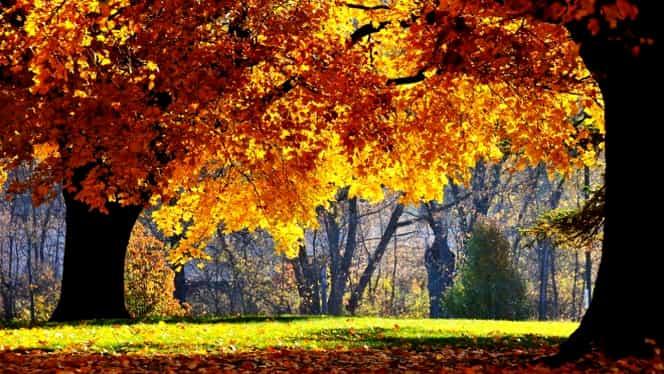 Vremea în București 5 octombrie. Final de săptămână plăcut