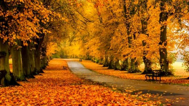 Prognoza pentru septembrie, octombrie şi noiembrie! Va ploua cu găleata în…