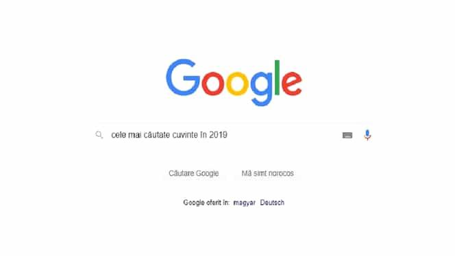 """Care au fost cele mai căutate cuvinte pe Google în 2019. """"eMag Black Friday"""" conduce topul"""