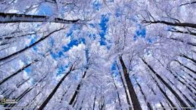 "Avertismentul unui meteorolog: ""Iarna 2017-2018 va fi una a extremelor!"""