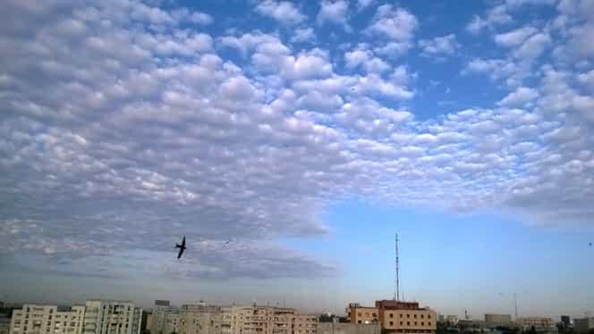 Prognoza meteo: luni, 16 decembrie 2019. Cum va fi vremea în București, Brașov, Constanța, Cluj-Napoca și Iași. Temperaturi anormal de ridicate