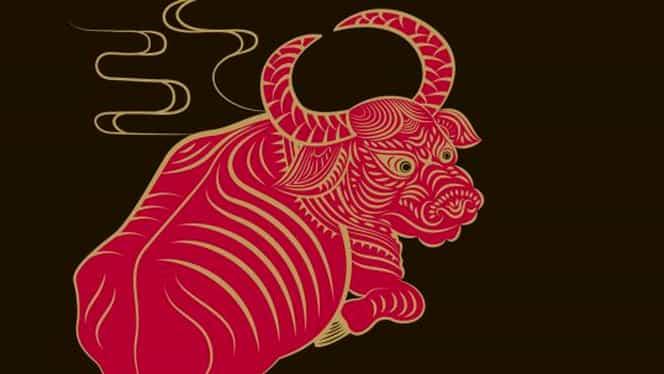 Zodiac chinezesc sâmbătă 30 noiembrie. Bivolii au idei bune la locul de muncă