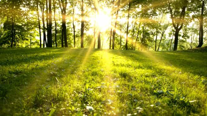 Prognoza meteo marți 16 octombrie. Meteorologii anunță un soare strălucitor!