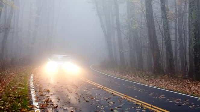 Prognoza meteo 25 noiembrie. Vremea va fi mohorâtă şi va cădea burniţă