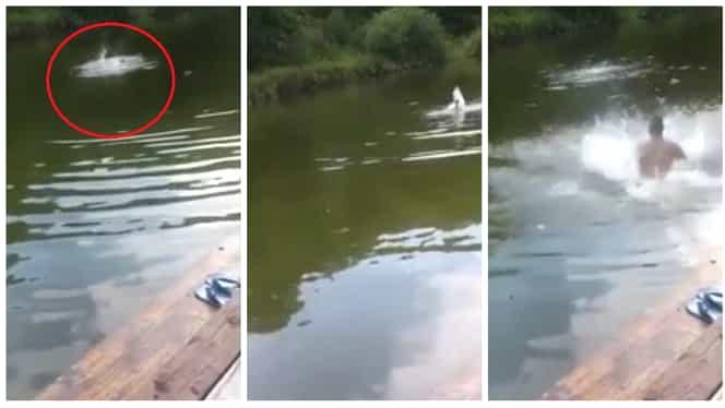 Și-au filmat prietenul în timp ce se îneca într-un lac!Motivul incredibil pentru care nu au intervenit